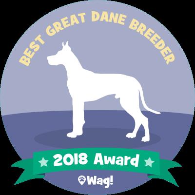 Wag! - Dog Walking & Boarding