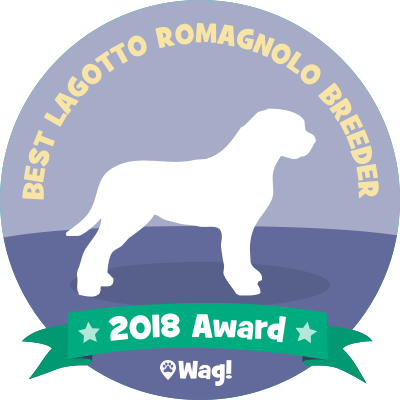 Wag! - Dog Walking & Boarding