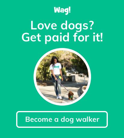 Wag! Dog Walking
